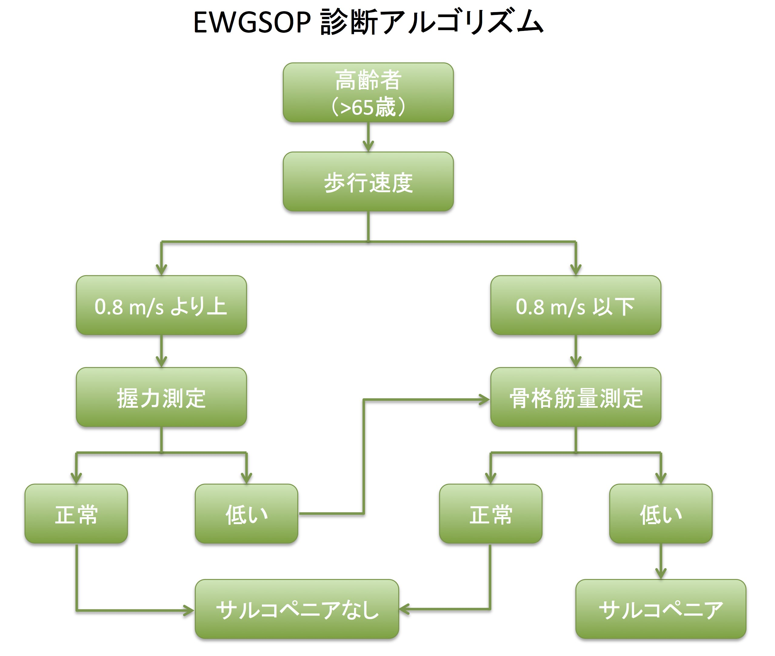 EWGSOP診断アルゴリズム