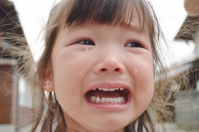 動物行動学から考えた「涙」の役割について