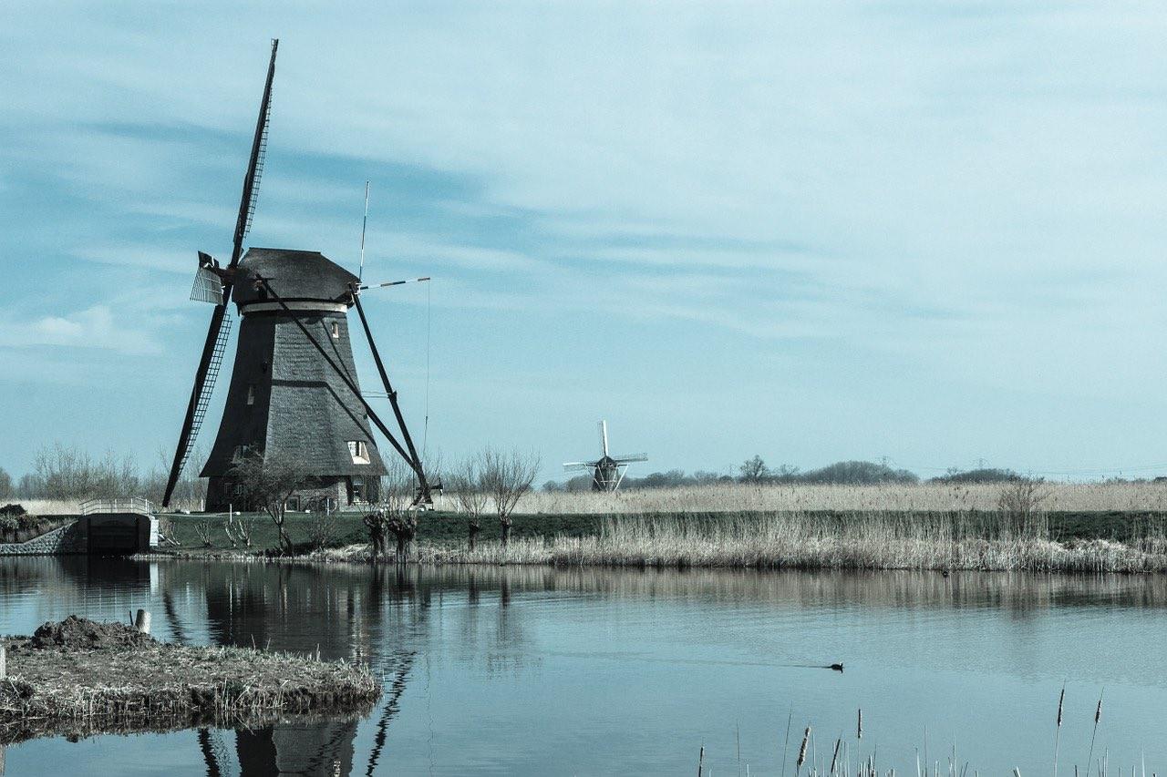 ビュートゾルフ(Buurtzorg)とは?オランダ発の在宅介護システムが成功している理由