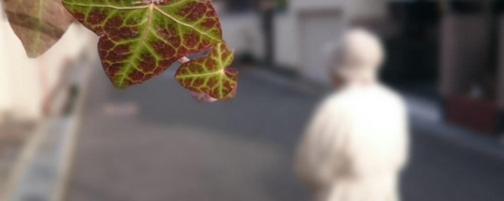 認知症の高齢者が起こしてしまった事故を救済する?(神戸市)