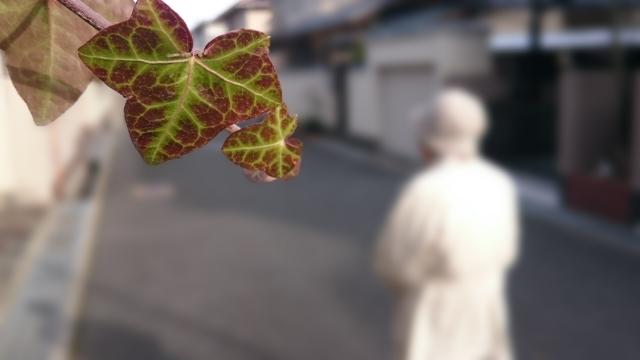 認知症高齢者が起こしてしまった事故を救済する?(神戸市)