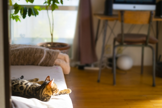 進む在宅勤務、日本全体での定着は近いか?
