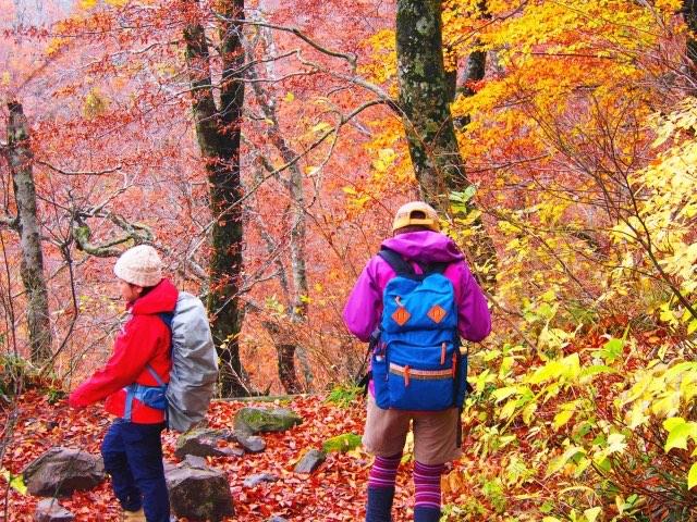 登山、遭難者の過半数、死者・不明者の約7割は60歳以上