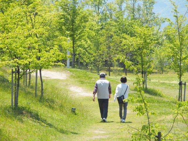 サービス付き高齢者向け住宅(サ高住)の廃業が起こっている?(ニュースを考える)