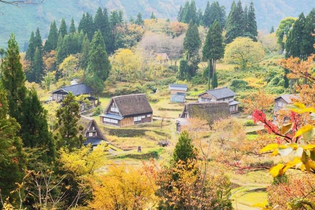 江戸時代の社会福祉制度に学ぶ?日本の社会福祉の未来