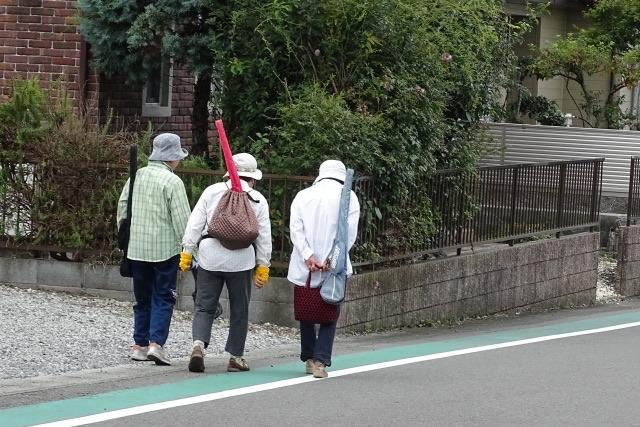 地域ボランティアは、高齢者の生きがいには影響しない?
