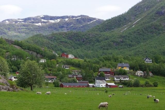 スウェーデンにおける在宅での認知症介護